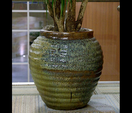 Decorative Containers Office Plants Indoor House Plants